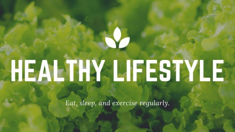What is a Healthy Lifestyle   6 Tips to maintain a Healthy Lifestyle