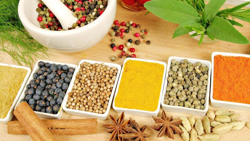 Why Ayurvedic Herbs are Important?